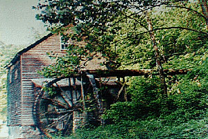 bushmill for web.jpg (43744 bytes)